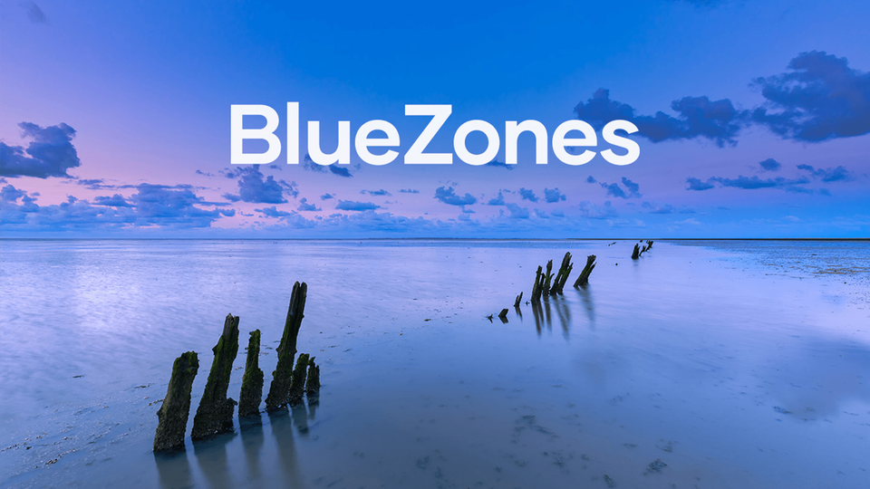 Why are Blue Zones important?