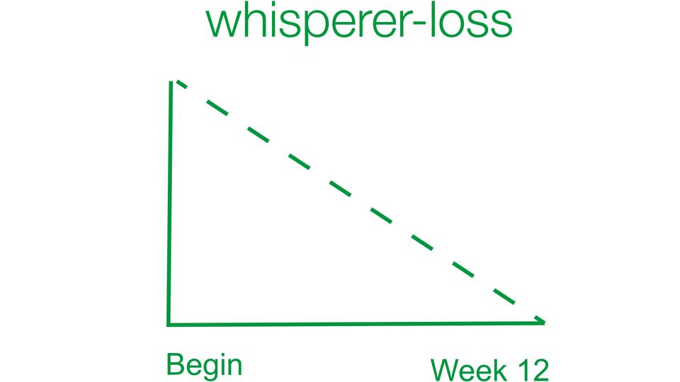 The whisperer-loss plan